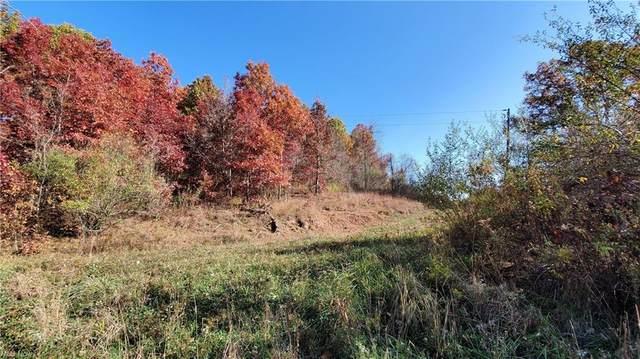 Township Road 166, Bloomingdale, OH 43910 (MLS #4274330) :: The Jess Nader Team | RE/MAX Pathway