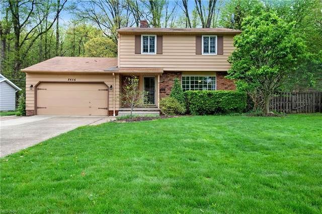 8456 Brentwood Drive, Olmsted Falls, OH 44138 (MLS #4275162) :: The Kaszyca Team