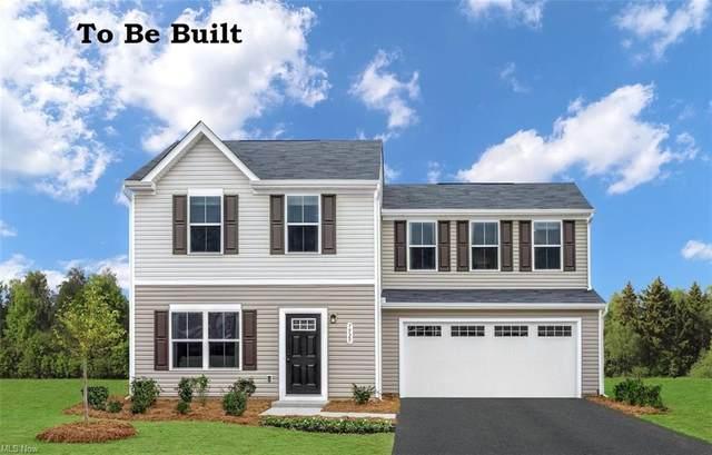 1344 Elizabeth Boulevard, Painesville Township, OH 44077 (MLS #4275961) :: TG Real Estate