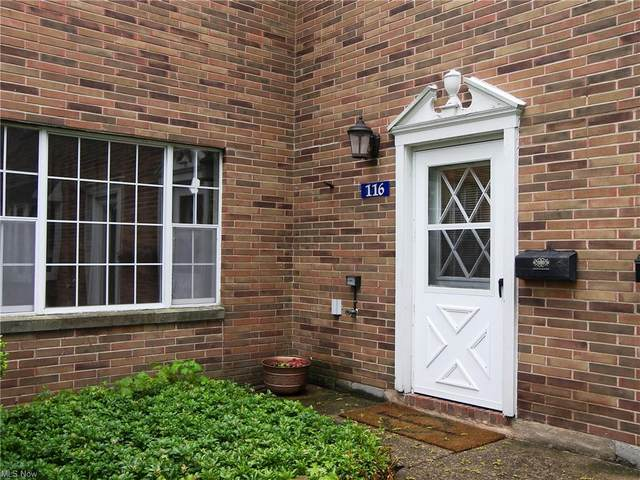 116 Shakespeare Lane, Avon, OH 44011 (MLS #4276315) :: The Art of Real Estate