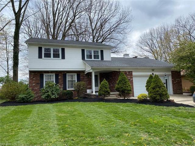 771 Oakridge Drive, Boardman, OH 44512 (MLS #4276427) :: RE/MAX Edge Realty
