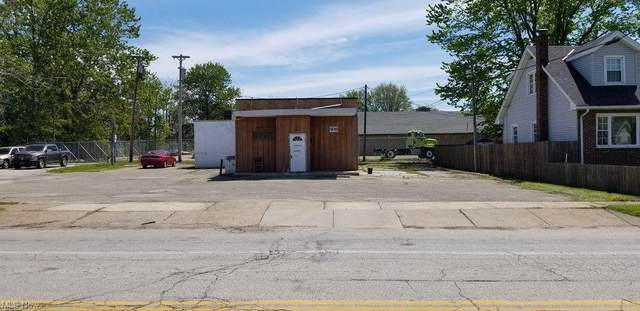 450 Chester Street, Painesville, OH 44077 (MLS #4276818) :: Keller Williams Legacy Group Realty