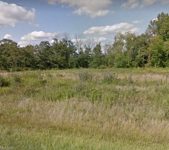 18055 Erhart Road, Grafton, OH 44044 (MLS #4277175) :: The Jess Nader Team   REMAX CROSSROADS