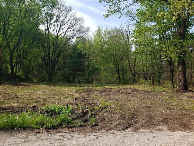 6766 East Street, Medina, OH 44256 (MLS #4277429) :: RE/MAX Trends Realty