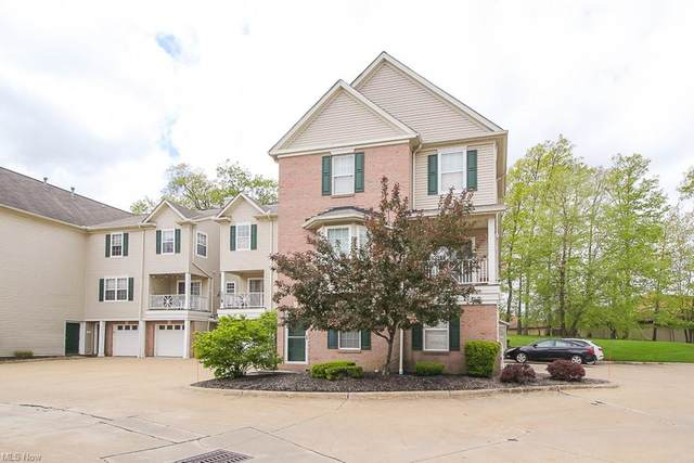 854 Tollis, Broadview Heights, OH 44147 (MLS #4277459) :: RE/MAX Trends Realty