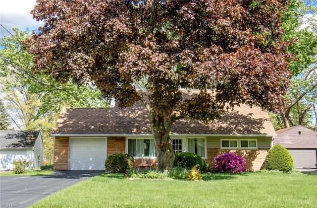 486 Westgate Boulevard, Youngstown, OH 44515 (MLS #4277476) :: Select Properties Realty