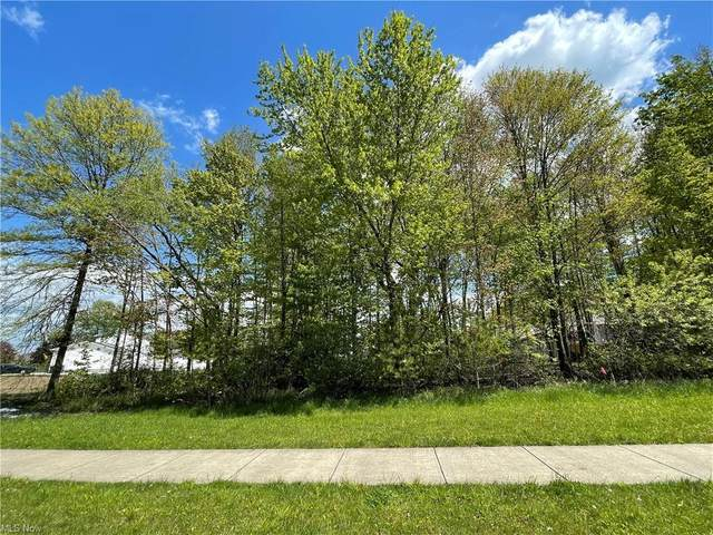 Mcdonald Avenue, McDonald, OH 44437 (MLS #4277571) :: The Holly Ritchie Team