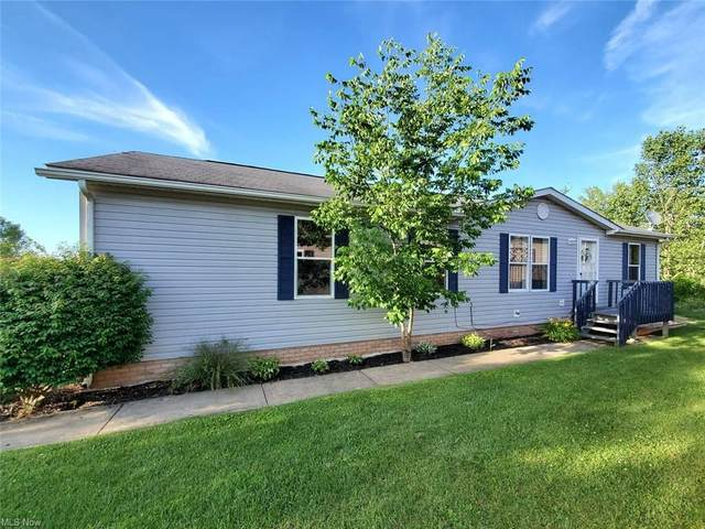8894 Falcon Drive, Streetsboro, OH 44241 (MLS #4277580) :: The Holly Ritchie Team