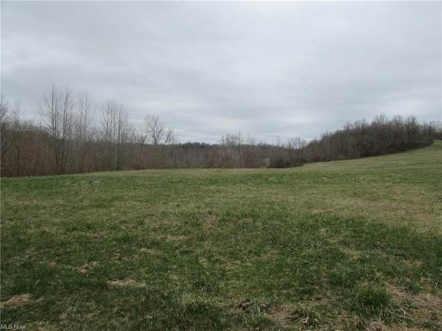 Rt 60, McConnelsville, OH 43256 (MLS #4278034) :: The Holden Agency