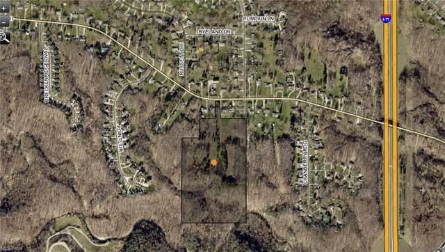 SL 1 Harris Road #1, Broadview Heights, OH 44147 (MLS #4278232) :: Keller Williams Legacy Group Realty