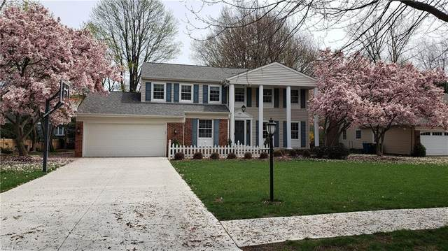 387 Hurst Drive, Bay Village, OH 44140 (MLS #4278304) :: RE/MAX Trends Realty