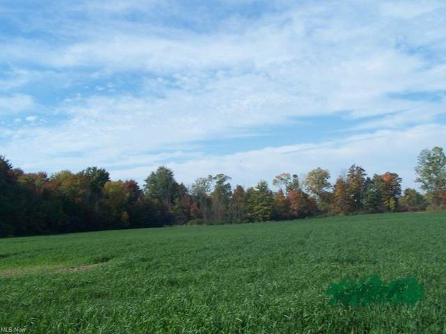 S/L Kennard Road, Harrisville, OH 44254 (MLS #4278572) :: The Art of Real Estate