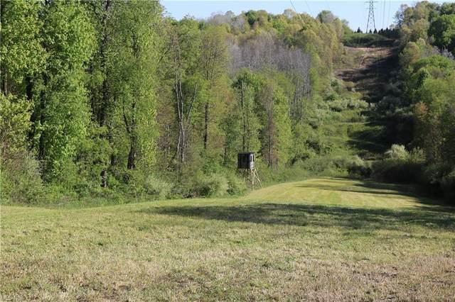 Haut Street SW, East Sparta, OH 44626 (MLS #4279421) :: Keller Williams Chervenic Realty
