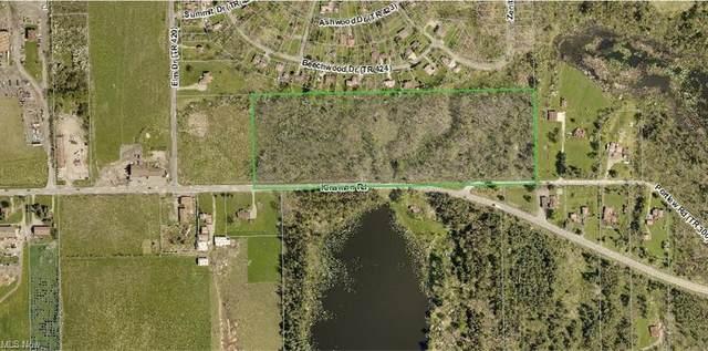 Kinsman Road, Newbury, OH 44065 (MLS #4280032) :: RE/MAX Trends Realty