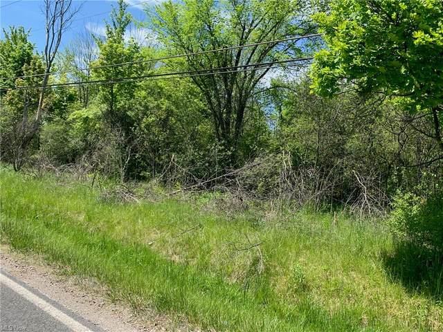 Stony Hill Road, Hinckley, OH 44233 (MLS #4280182) :: Keller Williams Legacy Group Realty