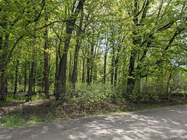 Burgundy Boulevard, Middle Bass, OH 43446 (MLS #4280488) :: RE/MAX Trends Realty