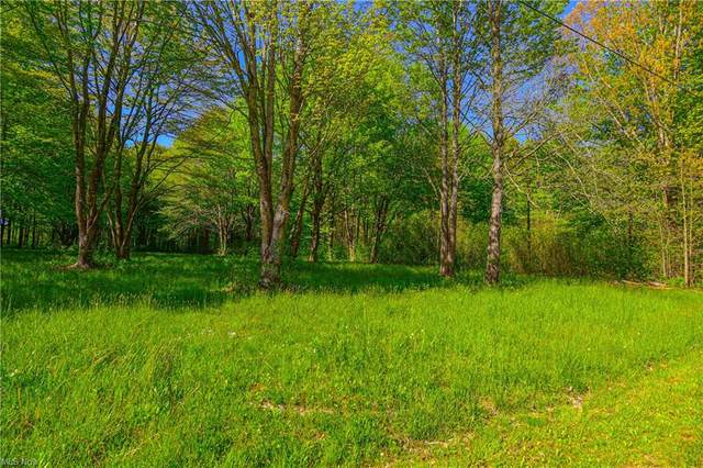 Sunset Avenue, Lake Milton, OH 44429 (MLS #4280948) :: The Holly Ritchie Team