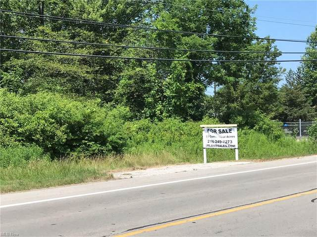 Center State Rd 45 Road, Ashtabula, OH 44004 (MLS #4281440) :: RE/MAX Trends Realty