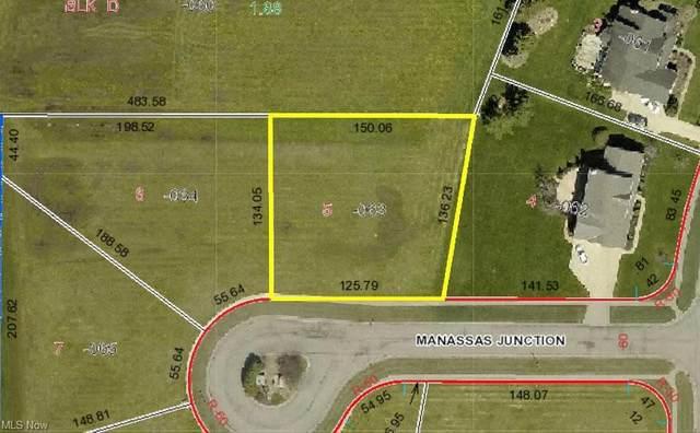 161 Manassas Junction, Lagrange, OH 44050 (MLS #4281982) :: TG Real Estate