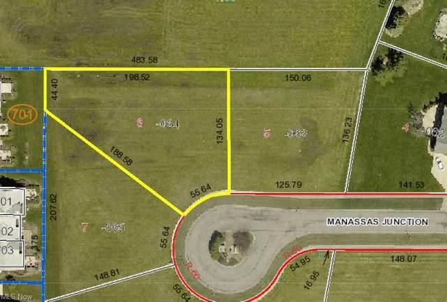 155 Manassas Junction, Lagrange, OH 44050 (MLS #4281996) :: TG Real Estate