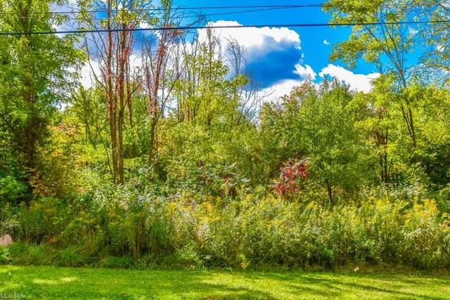0000 Rosewood Avenue NW, North Canton, OH 44720 (MLS #4282024) :: RE/MAX Trends Realty