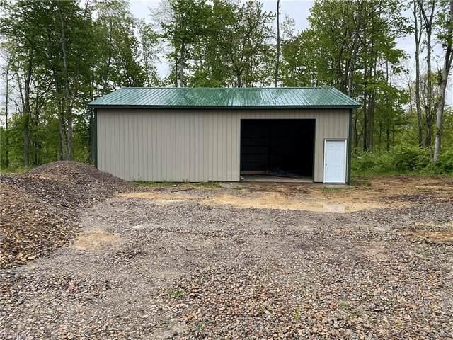 State Rd 799, Freeport, OH 43973 (MLS #4282099) :: Tammy Grogan and Associates at Keller Williams Chervenic Realty