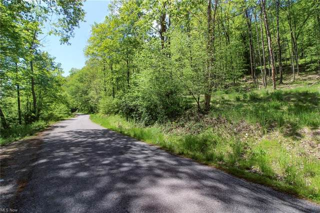 Township Road 166, Bloomingdale, OH 43910 (MLS #4282110) :: The Holly Ritchie Team