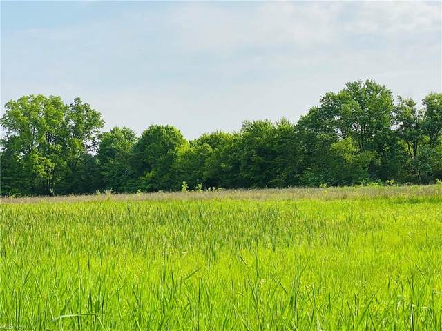 Robinson Road, Newton Falls, OH 44444 (MLS #4282462) :: RE/MAX Trends Realty