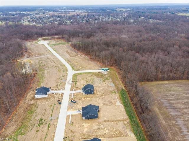 Crystal  Creek, Eaton, OH 44044 (MLS #4282490) :: The Holly Ritchie Team
