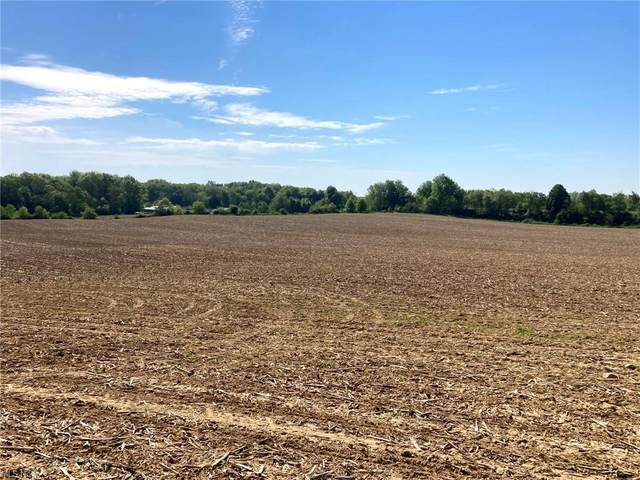 S Crown Hill Road, Orrville, OH 44667 (MLS #4282876) :: Select Properties Realty