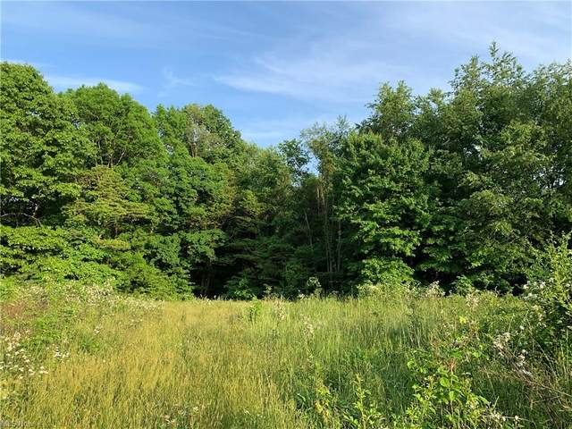 Township Road 180, Fresno, OH 43824 (MLS #4283247) :: The Holly Ritchie Team
