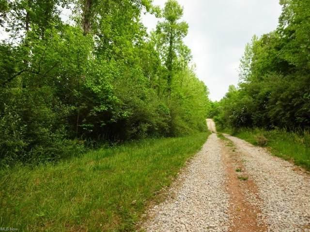 182 Laurel Glen Road, Looneyville, WV 25259 (MLS #4283358) :: The Jess Nader Team | REMAX CROSSROADS