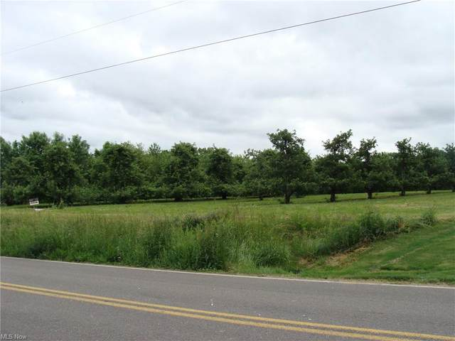 Beaver Creek Road, Salem, OH 44460 (MLS #4283647) :: The Holly Ritchie Team