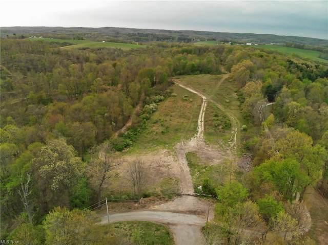 Stoney Hill Road, Newark, OH 43055 (MLS #4283658) :: The Holly Ritchie Team