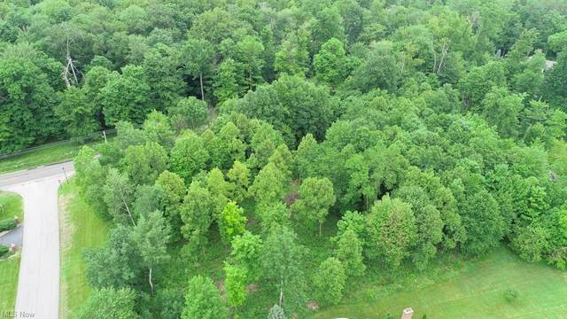 Muirfield Drive Lot # 14, Canfield, OH 44406 (MLS #4284064) :: TG Real Estate