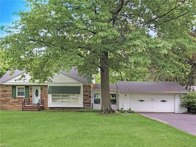 4545 Ammon Road, South Euclid, OH 44143 (MLS #4284531) :: The Tracy Jones Team