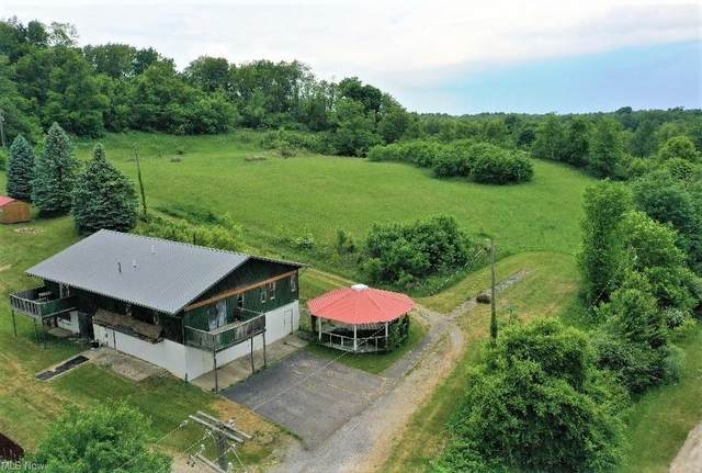 507 Jayla Drive, Hopedale, OH 43976 (MLS #4285410) :: The Jess Nader Team | REMAX CROSSROADS