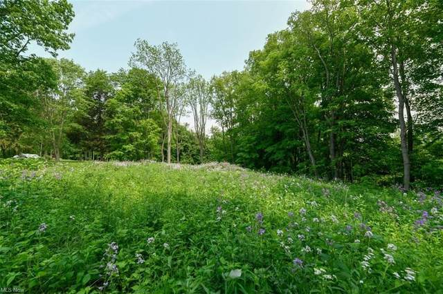 1745 Maple Hill Drive, Hinckley, OH 44233 (MLS #4285973) :: The Art of Real Estate