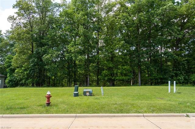 Valley Ranch Drive, Garfield Heights, OH 44125 (MLS #4286064) :: The Holly Ritchie Team