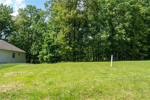 Valley Ranch Drive, Garfield Heights, OH 44125 (MLS #4286074) :: The Holly Ritchie Team
