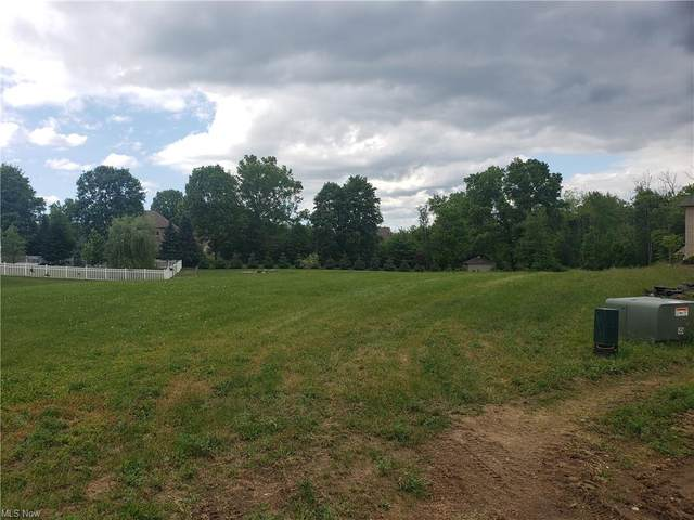 Cindy Circle, Kent, OH 44240 (MLS #4286343) :: The Holden Agency