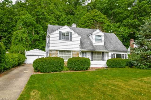 230 Lownsdale Avenue, Akron, OH 44313 (MLS #4286827) :: The Holden Agency
