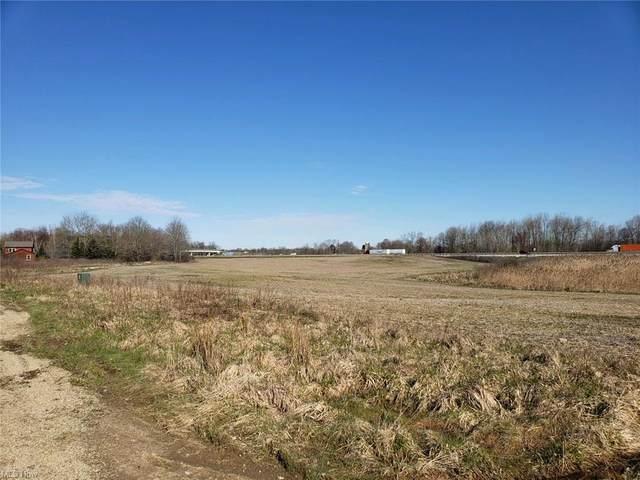 Slagle Road, Windham, OH 44288 (MLS #4286914) :: The Art of Real Estate