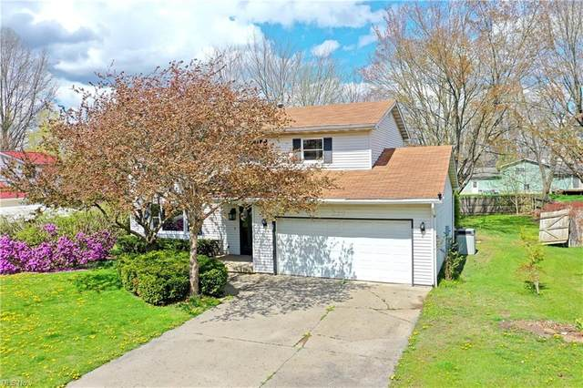 229 Terre Hill Drive, Cortland, OH 44410 (MLS #4286960) :: TG Real Estate