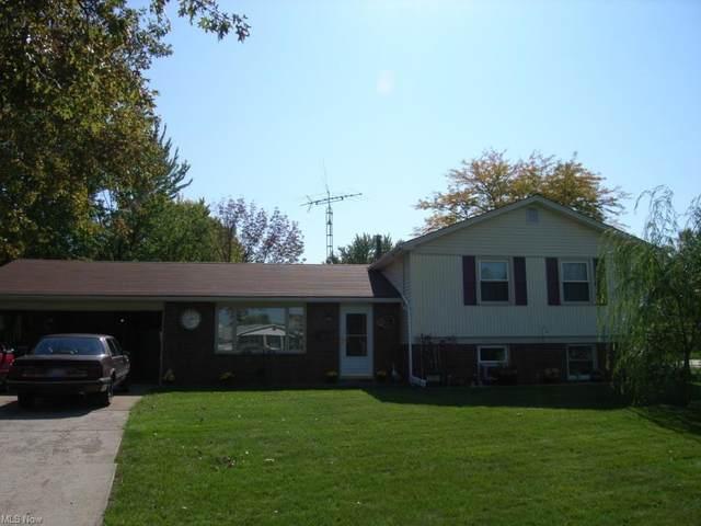 1331 Tower Boulevard, Lorain, OH 44053 (MLS #4287022) :: Tammy Grogan and Associates at Keller Williams Chervenic Realty