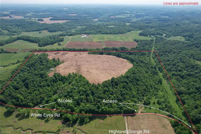 White Eyes Road, New Concord, OH 43762 (MLS #4287109) :: The Holden Agency