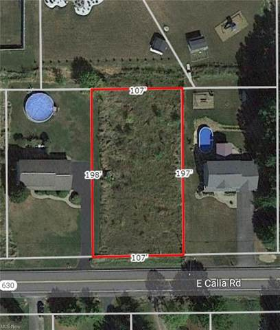 E Calla Road, New Middletown, OH 44442 (MLS #4287139) :: RE/MAX Trends Realty