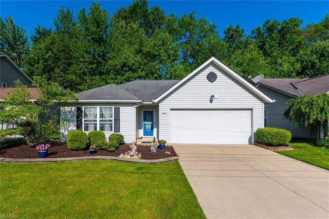 6688 Monroe Lane, North Ridgeville, OH 44039 (MLS #4287605) :: The Holly Ritchie Team