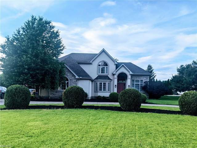 10955 Ellison Creek Drive, Painesville, OH 44077 (MLS #4287886) :: The Jess Nader Team | RE/MAX Pathway