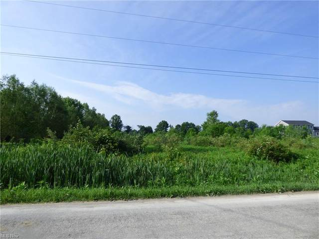 239 Township Road 350, Sullivan, OH 44880 (MLS #4288089) :: The Holden Agency